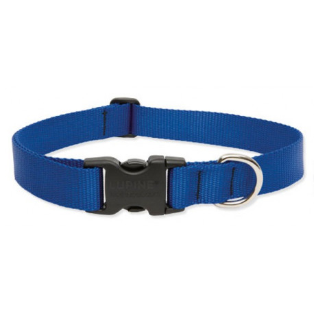 Lupine Large Dog Collar In Blue