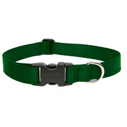 Lupine Large Dog Collar In Green
