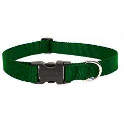 Lupine Large Dog Collar In Green