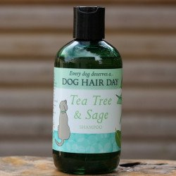 Tea Tree & Sage Shampoo