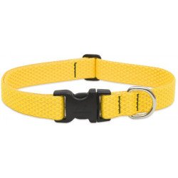 Lupine Eco Dog Collar Sunshine