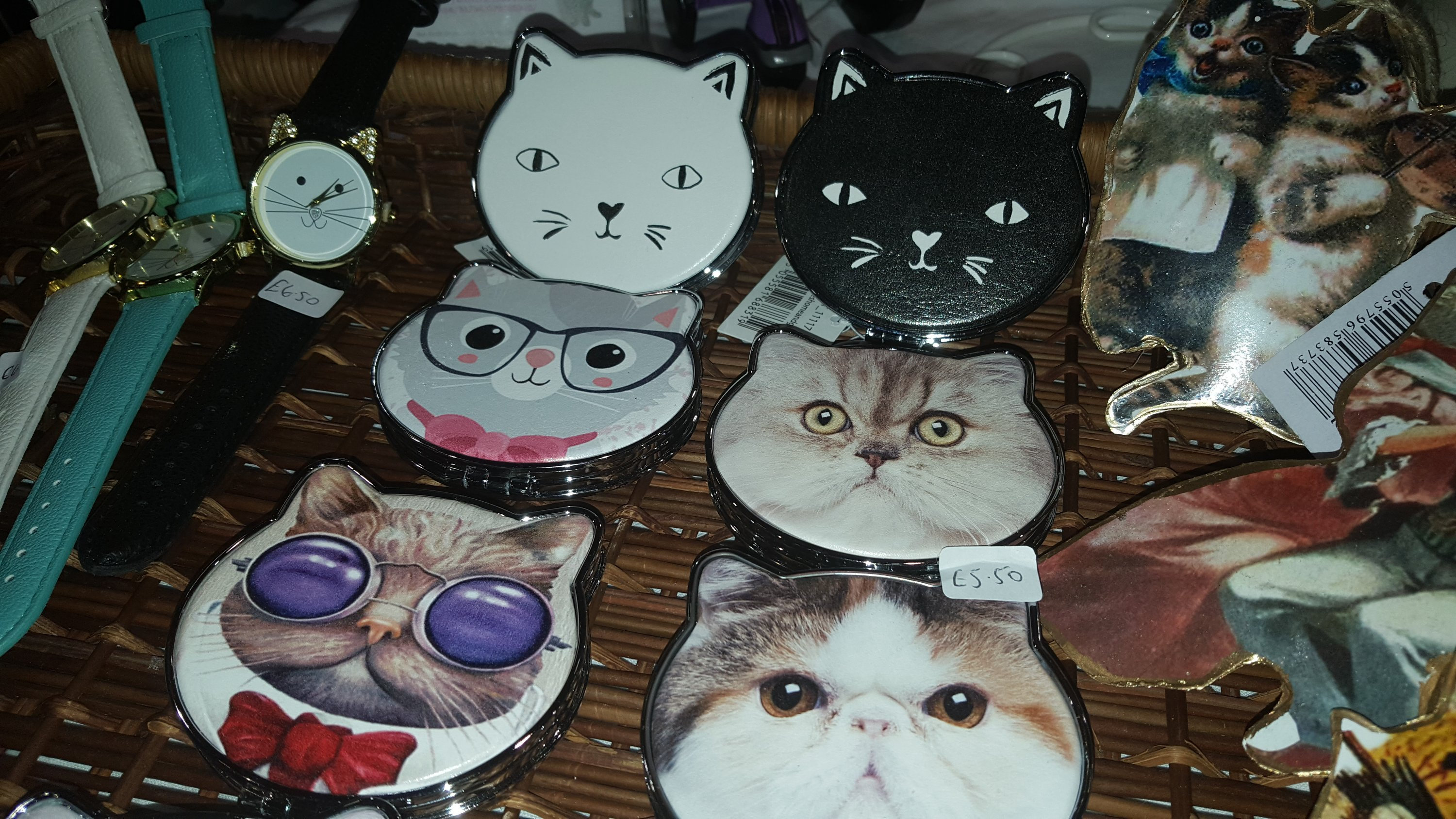 Vegan fair cat rescue cat mirrors